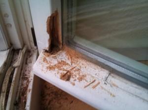 Balkontuer-Holz-verfault-vor-Reparatur